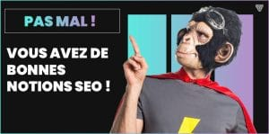score-15-quiz-seo-agence-touch2web